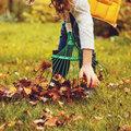 Herbstliche Rasenpflege: So übersteht Ihr Rasen den Winter