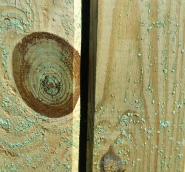 Salzablagerungen auf imprägniertem Holz