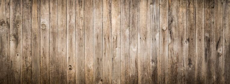 Äste im vergrauten Holz