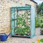 Tomatengewächshaus doppelseitig für 6 Tomatenpflanzen