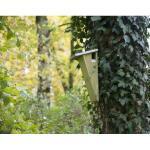 Nistkasten Baumläufer