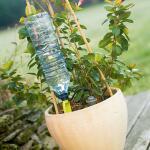 Tropfsystem für Flaschen