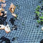Feinmaschiges Teichnetz 6 x 5 Meter