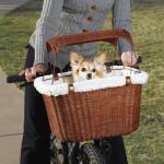 Hundekorb für Fahrrad mit Sonnenschirm