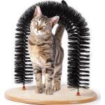 Katzenbogen mit Katzenminze