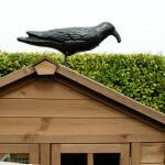 Taubenschreck Krähe mit Geräusch