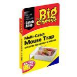 Mausefalle bis 4 Mäuse oder mehr - Kunststoff