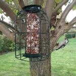 Erdnusssilo kleine Vögel (grün)