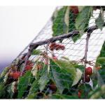 Gartennetz grobmaschig 8 m x 8 m