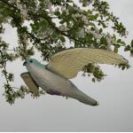 Turmfalke als Vogelscheuche
